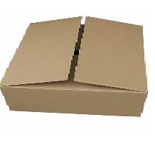 Carton for 65cm Radome